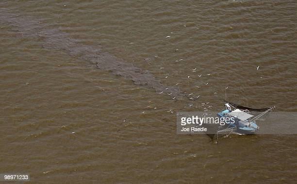 A shrimp boat works in the waters in the southwest region of Louisiana on May 11 2010 in Gulf of Mexico Oil is still leaking out of the Deepwater...