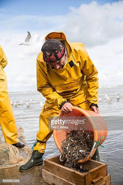 Shrimp Fisherman, Oostduinkerke, Belgium