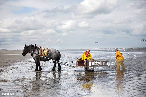 Shrimp Fishermen, Oostduinkerke, Belgium