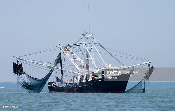 Shrimp Fishing Boat