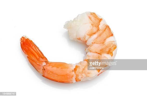 shrimp - shrimp stock photos and pictures