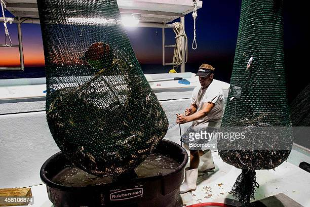 A shrimper empties out nets into a bin after a days catch on a shrimping boat off the coast of Grand Isle Louisiana US on Wednesday Oct 22 2014...