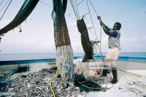 Shrimping off Hilton Head Island