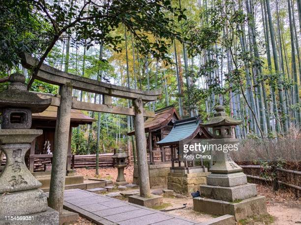 A shrine in a bamboo forest