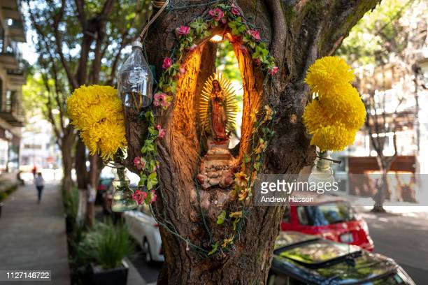 Shrine to the Virgin of Guadalupe in the Roma neighbourhood on January 23 2019 in Mexico CityMexico