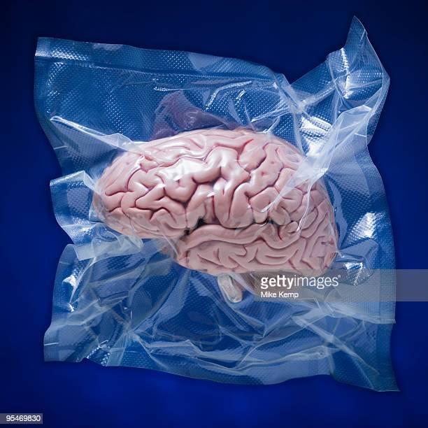 Shrink wrapped brain