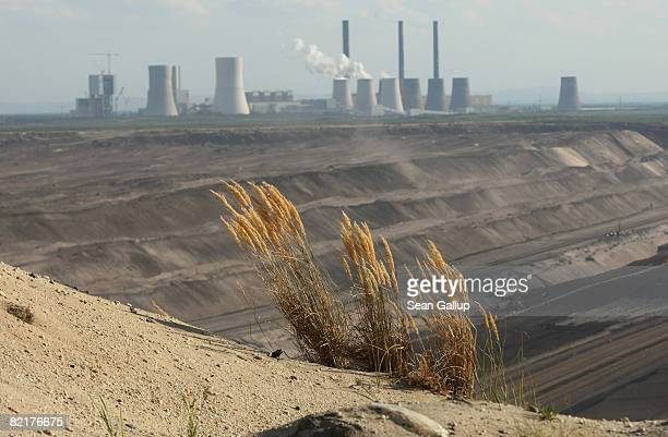 A shrub clings to the edge of the massive Nochten openpit lignite coal mine as the Boxberg coalfired power plant is visible behind on August 4 2008...