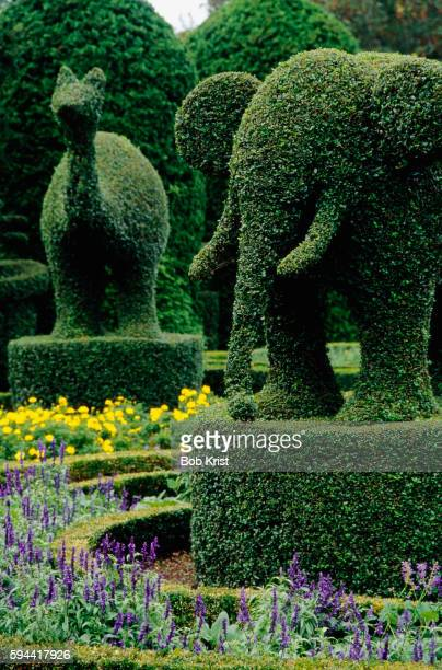 Shrubs Sculpted into Animals at Topiary Garden