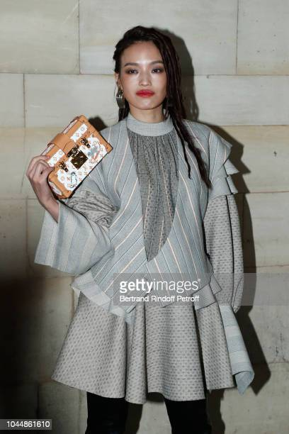 Shu Qi attends the Louis Vuitton show as part of the Paris Fashion Week Womenswear Spring/Summer 2019 on October 2 2018 in Paris France