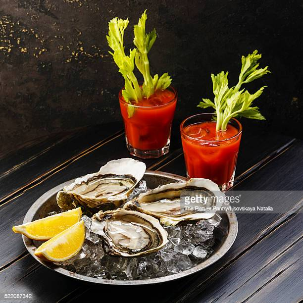 shucked oysters fines de claire and bloody mary cocktail on dark background - mary moody fotografías e imágenes de stock