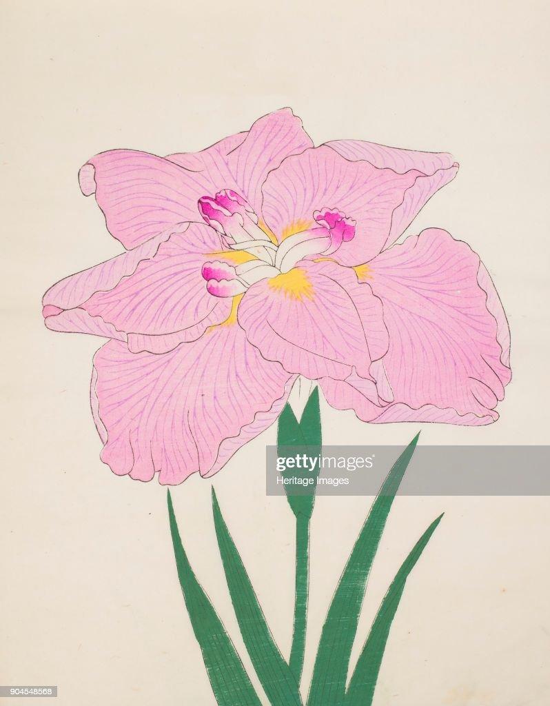 Shu Fu Raku No 58 1890 Colour Woodblock Print