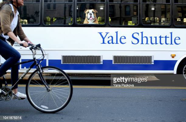 A shuttle drives students around the campus of Yale University on the day the US Senate Judiciary Committee was holding hearings for testimony from...