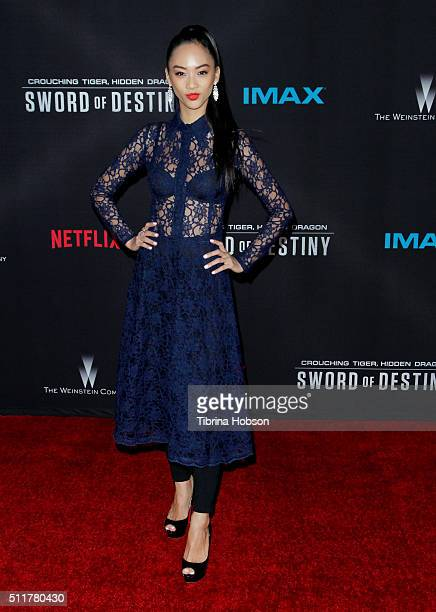 Shuya Chang attends the Premiere of Netflix's 'Crouching Tiger Hidden Dragon Sword Of Destiny' at AMC Universal City Walk on February 22 2016 in...