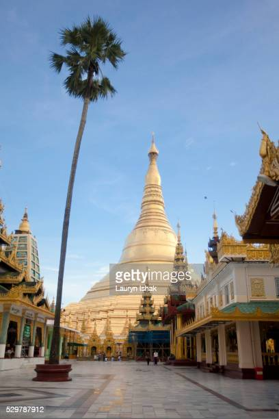 shwedagon pagoda, yangon, myanmar - lauryn ishak stock pictures, royalty-free photos & images
