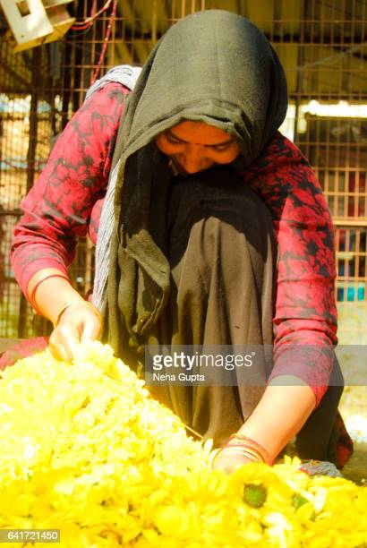 a shy florist - neha gupta stock pictures, royalty-free photos & images