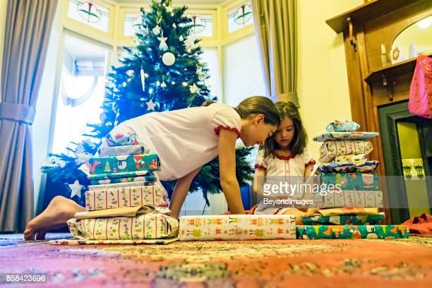 Sibling: young sibling girls with Christmas presents, Xmas tree, summer sunlight