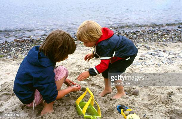 Siblings collecting stones at beach