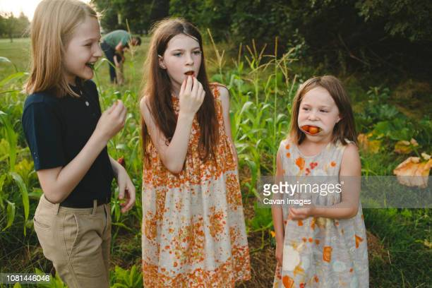 Siblings eating tomatoes while standing on field at farm