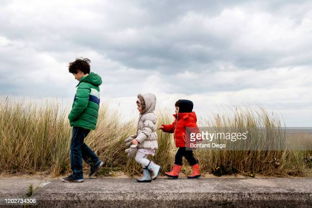 siblings exploring beach - three people stock pictures, royalty-free photos & images