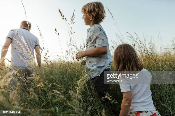 siblings following their father in nture - following moving activity stock pictures, royalty-free photos & images