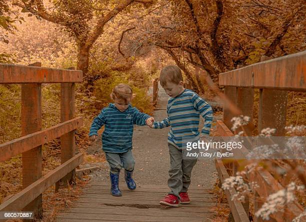 Siblings Holding Hands While Walking On Damaged Footbridge In Forest During Autumn