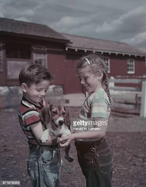 siblings petting their puppy  - mamífero con garras fotografías e imágenes de stock
