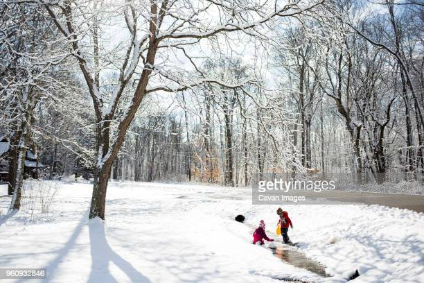 siblings playing on snow covered field - milwaukee county  wisconsin stock pictures, royalty-free photos & images