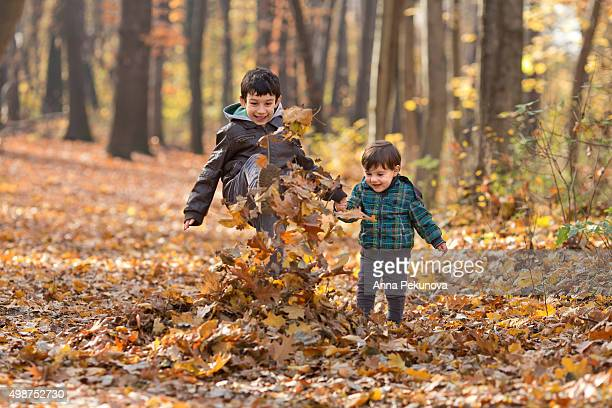 siblings playing with autumn leaves - eastern european descent stock pictures, royalty-free photos & images