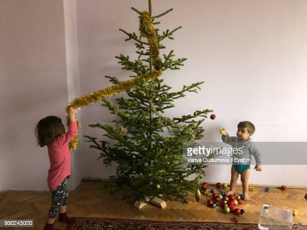 Siblings Playing With Christmas Tree At Home