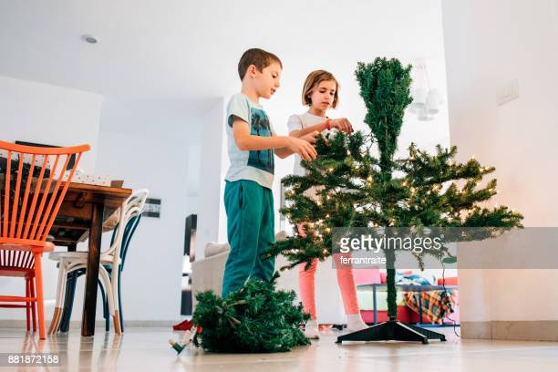 siblings putting up a christmas tree - mexican christmas stock photos and pictures