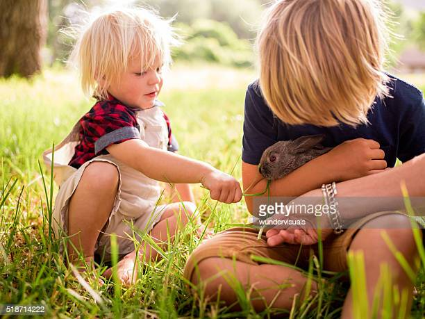 Siblings tenderly taking care of a bunny at the park