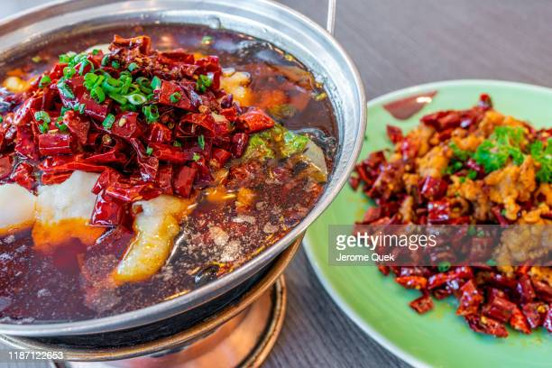 sichuan spicy hotpot, spicy fried chicken as side dish - 四川省 ストックフォトと画像