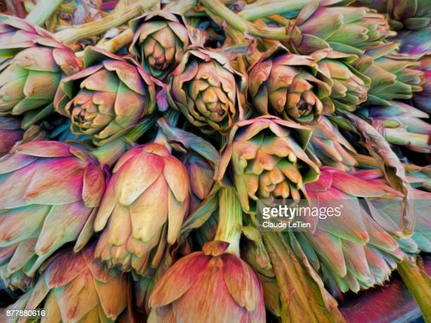sicilian artichokes - catania stock pictures, royalty-free photos & images