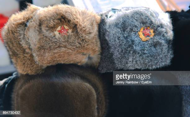 Sickle And Hammer On Fur Hat