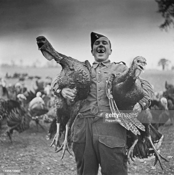 Sid Fraser, now enrolled in the British armed forces, laughs as he holds two Bronze turkeys being fattened for Christmas at Hill Farm in Great...