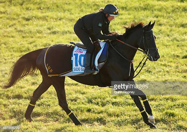 Side Glance gallops down the straight during a Werribee trackwork session at Werribee Racecourse on October 21 2014 in Melbourne Australia