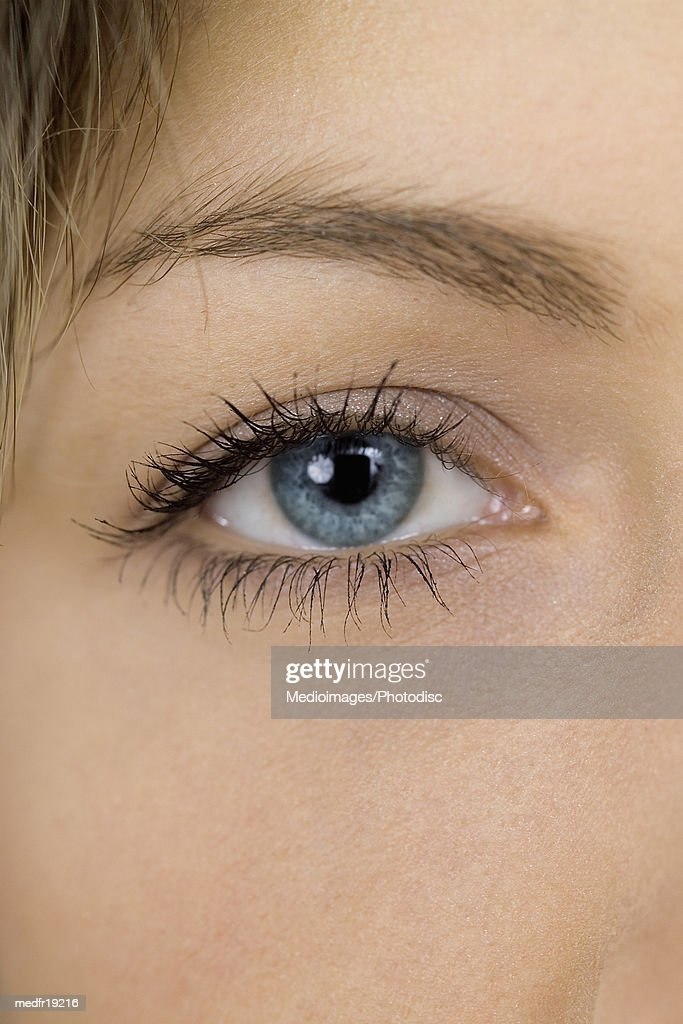 Side of woman's face, human face, close-up : Stock Photo