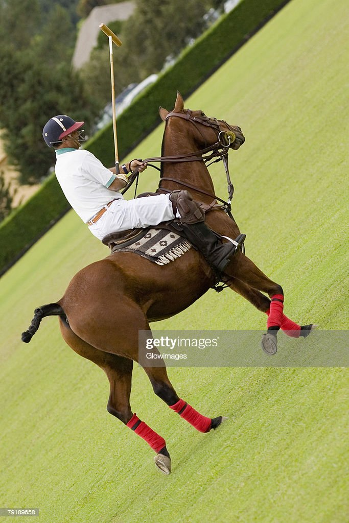 Side profile of a mature man playing polo : Foto de stock