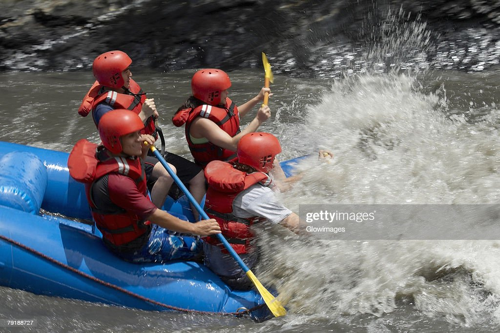 Side profile of four people rafting in a river : Stock Photo