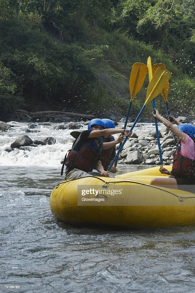 Side profile of four people rafting in a river : Foto de stock