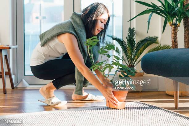 side profile of smiling woman lifting potted plant at home - japanese ethnicity stock pictures, royalty-free photos & images