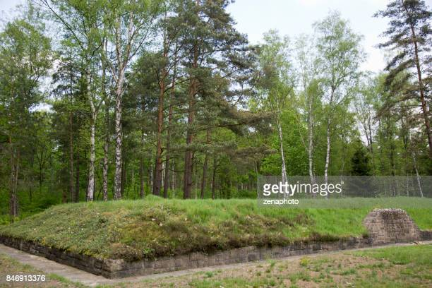 side view memorial mass grave bergen-belsen - mass graves stock photos and pictures