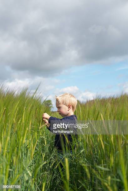 Side view of a boy standing in a field