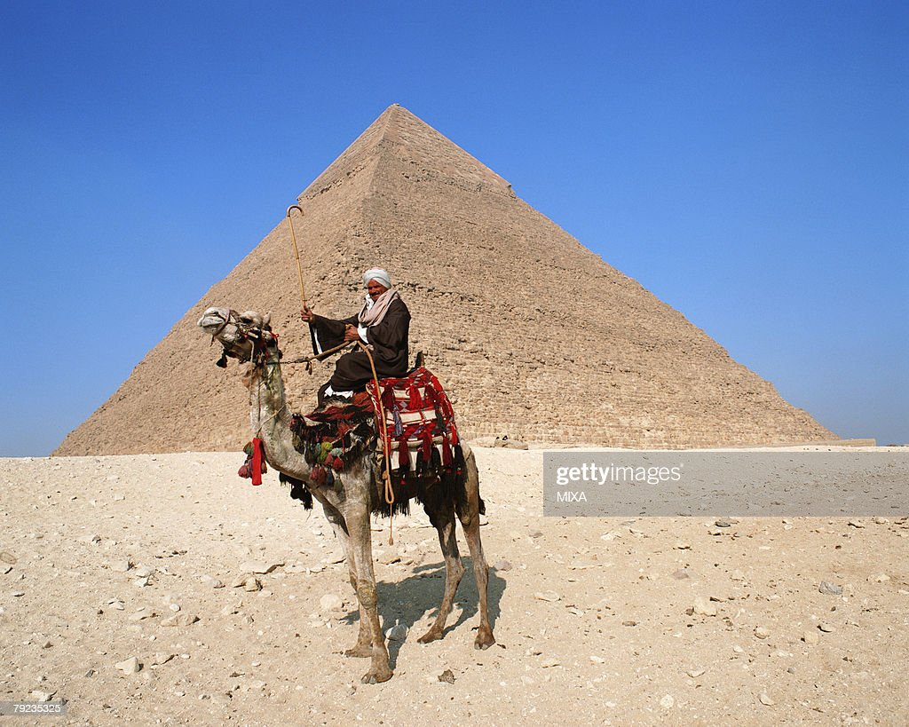 Side view of a camel rider in front of pyramid, Giza, Egypt : Stock Photo