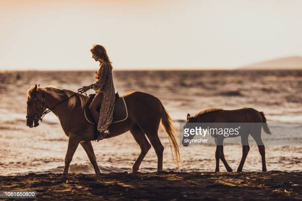 Side view of a happy woman riding a horse on the beach.