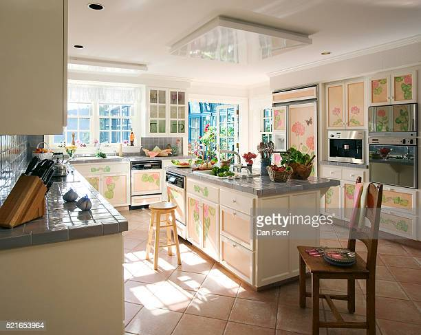 Side view of a kitchen having a floral motif