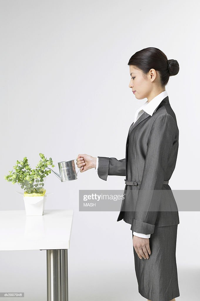 Side View of a Woman Watering a Bonsai Tree With a Watering Can : Stock Photo