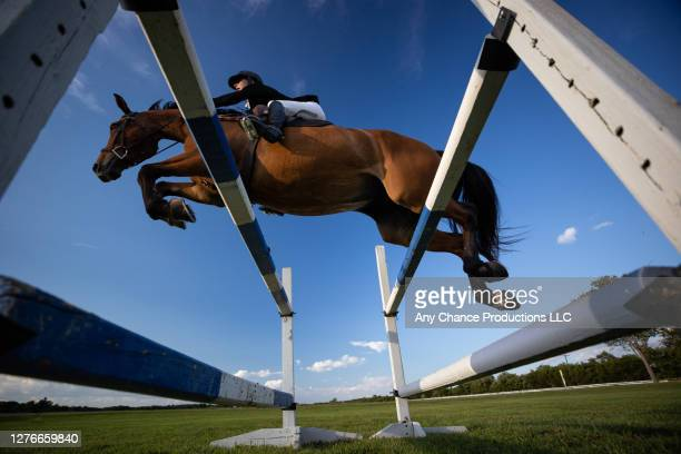 side view of a young female equestrain making a jump - equestrian show jumping stock pictures, royalty-free photos & images