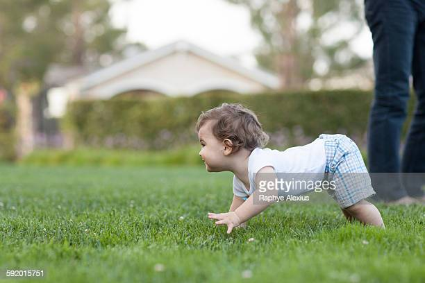 Side view of baby boy crawling on grass
