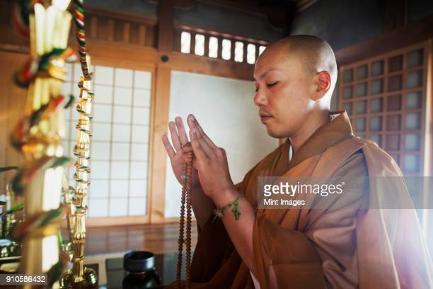 side view of buddhist monk with shaved head wearing golden robe kneeling indoors in a temple, holding mala, eyes closed. - shingon buddhismus stock-fotos und bilder